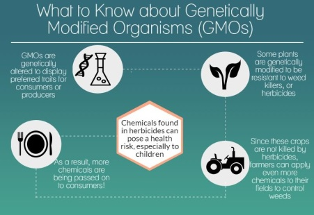 gmo-infographic-back